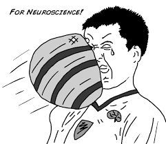 How Does A Reflex Arc Work In A Nervous System Experiment How Fast Your Brain Reacts To Stimuli