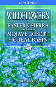 great basin native plants wildflowers of the eastern sierra and adjoining mojave desert and