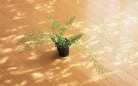 Laminate Flooring In Kitchens Waterproofing Laminate Floor Sealer Popular
