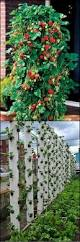 best 25 strawberry planters ideas on pinterest strawberry tower