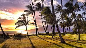 aloha villas luxury beachfront villas kihei maui