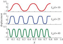 buckling morphology of an elastic beam between two parallel