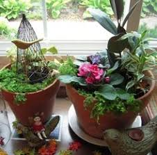 Winter Indoor Garden - indoor vegetable gardening clean me indoor gardening