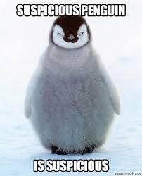 Socially Awkward Penguin Meme Generator - meme generator penguin socially awkward penguin meme template