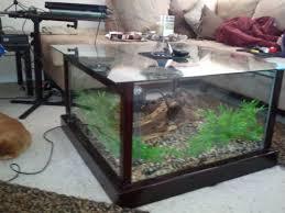 fish tank coffee table diy diy fish tank coffee table so gonna do this n put the snake in