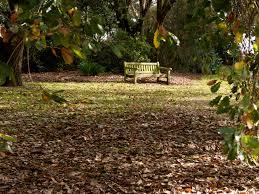 Geelong Botanic Gardens by Botanic Gardens Fredodonnellphotography