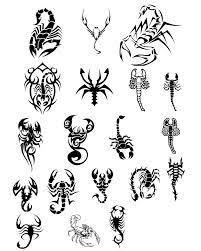 What Do Scorpion Tattoos Best 25 Scorpio Tattoos Ideas On My Sign