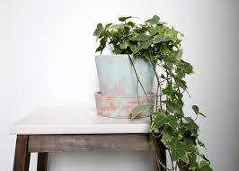 diy giv din terrakotta potte patina med kalkmaling flair