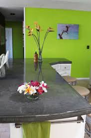 green kitchen sinks kitchen exciting picture of kitchen decoration using double bowl