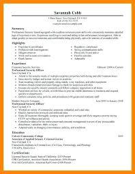 resume samples professional summary security guard resume examples u2013 inssite