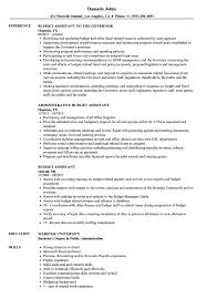 budget assistant resume samples velvet jobs