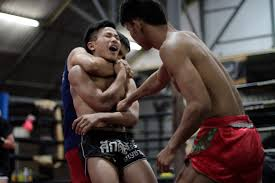 buakaw banchamek and the life of a muay thai celebrity vice sports