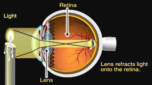 how the eye works animation how do we see nearsighted