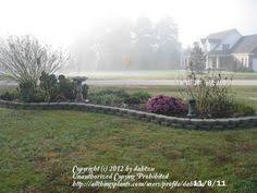 Designing Flower Beds Kidney Shaped Flower Bed Bing Images Ideas For The House
