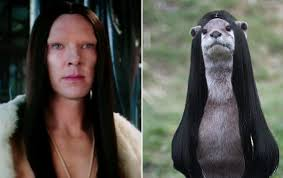 Cumberbatch Otter Meme - 5 things benedict cumberbatch looks like in the zoolander 2 trailer