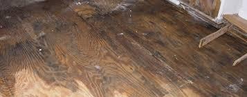Laminate Flooring Water Damage Water Damage Prevention Tips Jenkins Restorations