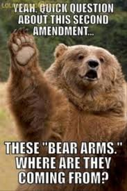 Bear Memes - funny polar bear memes