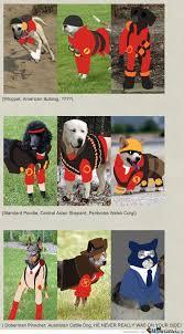 Funny Tf2 Memes - tf2 dogs by mustapan meme center