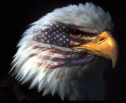 American Flag Pictures Free Download American Flag Eagle Pics Free Download