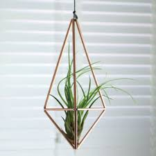 Geometric Hanging Planter by Shop Hanging Air Plant Terrarium On Wanelo