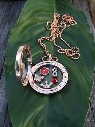 large locket necklace images Red lady bug floating charm set with large memory locket necklace jpg