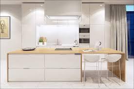 kitchen modern kitchen nyc kitchen cabinets brooklyn ny 11230