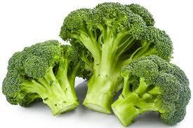cuisiner brocoli tout savoir sur le brocolis le choisir le cuisiner le conserver
