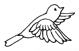 cute bird coloring pages kids