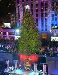crazy christmas tree lights look craziest christmas trees from around the world christmas tree