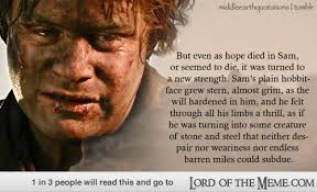 Lord Of The Meme - 17 perfect lord of the rings movie quotes lord of the rings