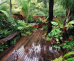 Backyard Pictures Ideas Landscape Best 25 Tropical Backyard Landscaping Ideas On Pinterest