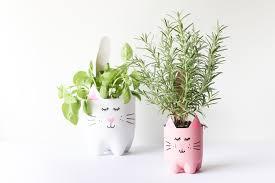cute plant diy soda bottle kitty cat planters salty canary