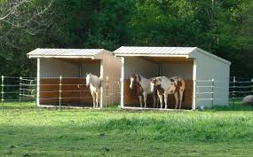 classic salt box style run in horse shelter the wrangler is our