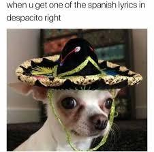 Memes In Spanish - dopl3r com memes when u get one of the spanish lyrics in