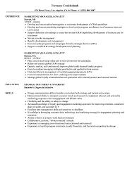 Resume Sample Resume Marketing Manager by Marketing Manager Loyalty Resume Samples Velvet Jobs