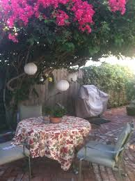 my backyard sanctuary