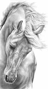 pin by salman tahir on real lion arts and sketches pinterest