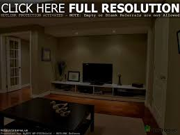 apartments appealing cebcecaafe for basement living room ideas
