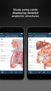 Anatomy And Physiology Made Incredibly Easy Pdf Best Anatomy And Physiology Made Incredibly Easy Free Download At