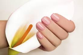 nail service serente spa