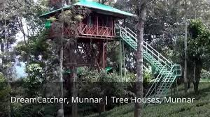 tree houses in munnar kerala things to do in munnar kerala