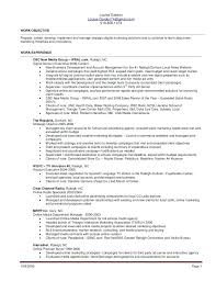resume templates for a buyer planner buyer resume sle buyer resume buyer resume sle