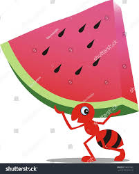 red ant carrying watermelon stock vector 538317481 shutterstock