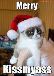 Merry Xmas Memes - funny merry christmas meme ft grumpy cat grumpy cat pinterest