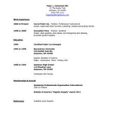 Resume First Job Template Cover Letter Resume Samples First Job Resume Sample After First