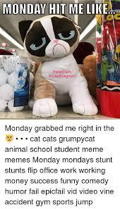 Success Cat Meme - 25 best memes about success funny success funny memes