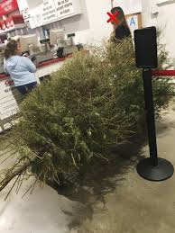christmas tree woman returns a christmas tree on january 4th because it s dead