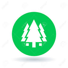 tree icon pine tree forest sign christmas tree symbol white