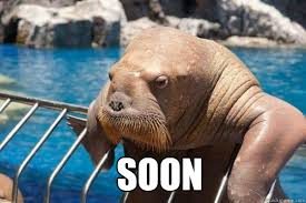 Walrus Meme - soon soon walrus quickmeme