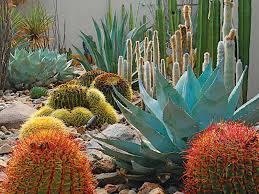Southwest Landscape Design by Landscape Design For All Climates Photo 2 Of 12 Dwell